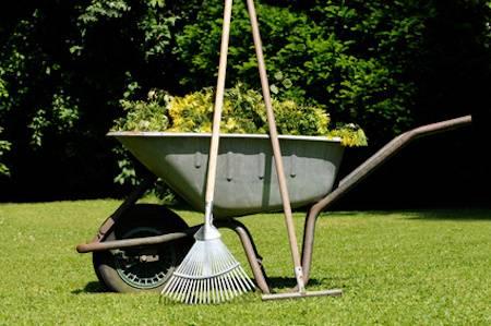 Mach' mit: Arbeiten in der Gärtnerei