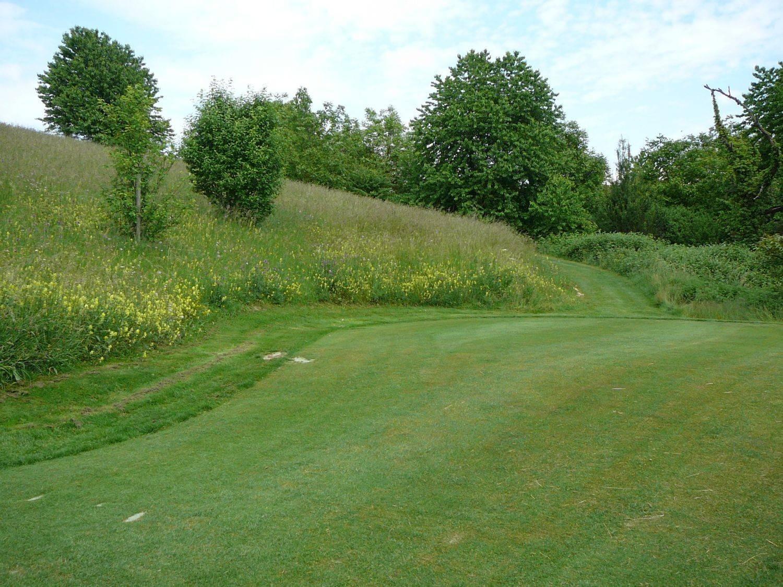 Golfplatz Nack, Lottstetten, Aussaat 1992, Aufnahmejahr 2010