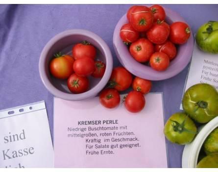 Tomate, Kremser Perle