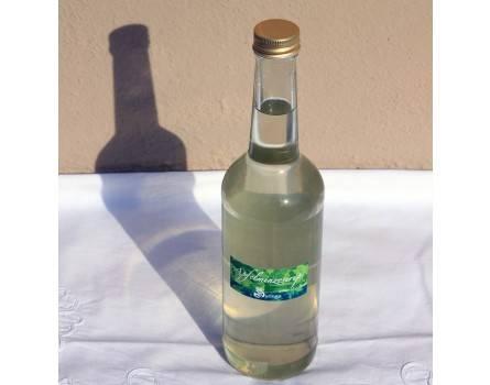 Apfelminzesirup (500 ml)