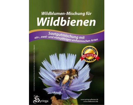 M13: Wildblumenmischung für Wildbienen für 10m² (Saatgut)