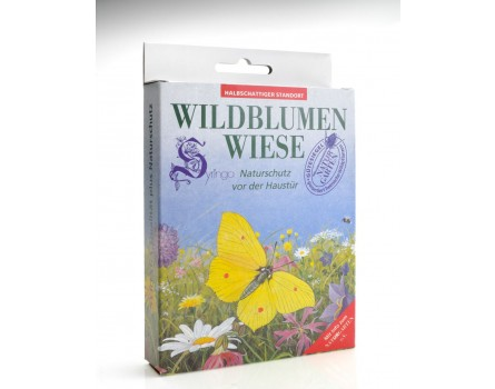 Wildblumenwiese, halbschattig, Faltbox