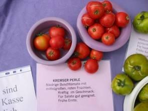 Tomatensorte Kremser Perle