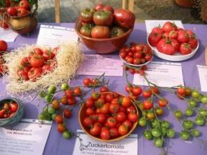 Tomatenraritäten