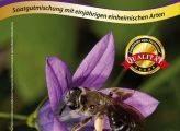 Mischung 12: Wildblumen für Wildbienen