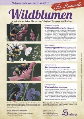Samen-Set für Hummeln, Wildblumen