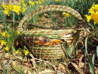 Korbwickeln mit Gräsern und Kräutern