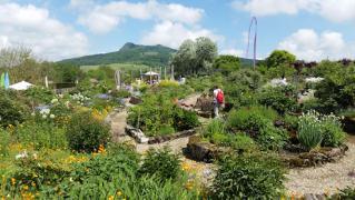 Führung durch den Duftpflanzen- und Kräuterschaugarten