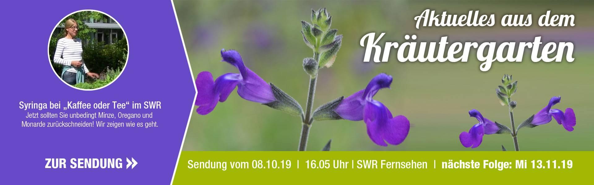 SWR_10_Kr_uter