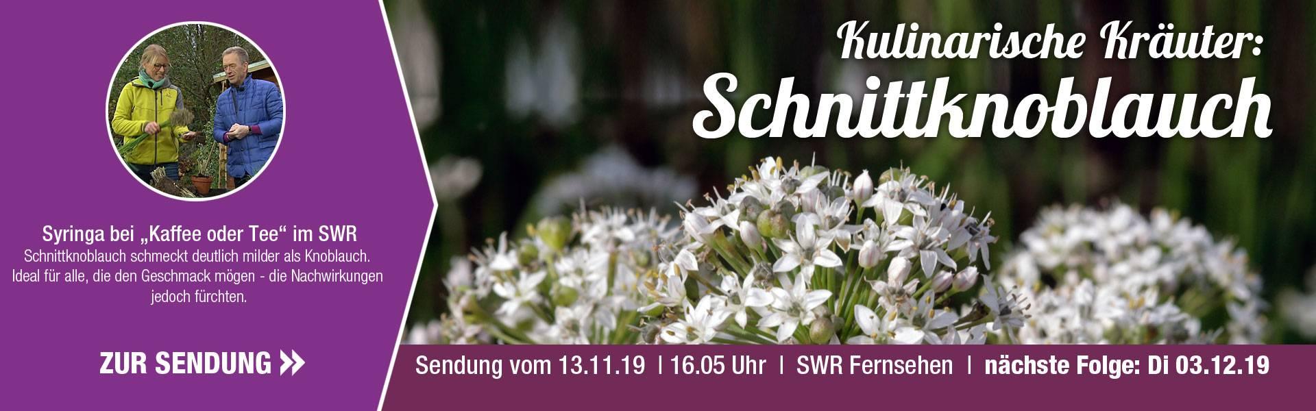 SWR_11_Schnittknoblauch_1