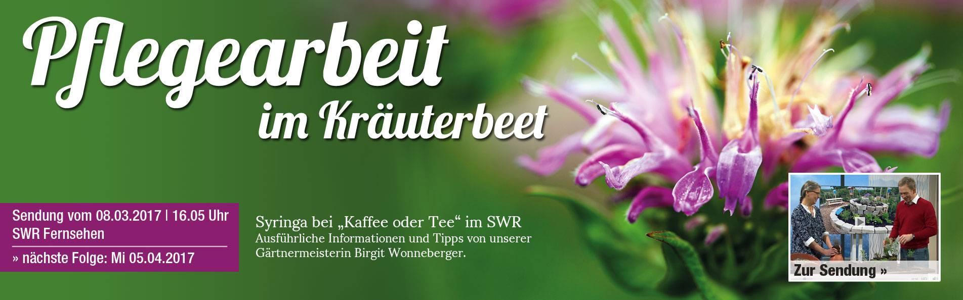 SWR_Beetpflege
