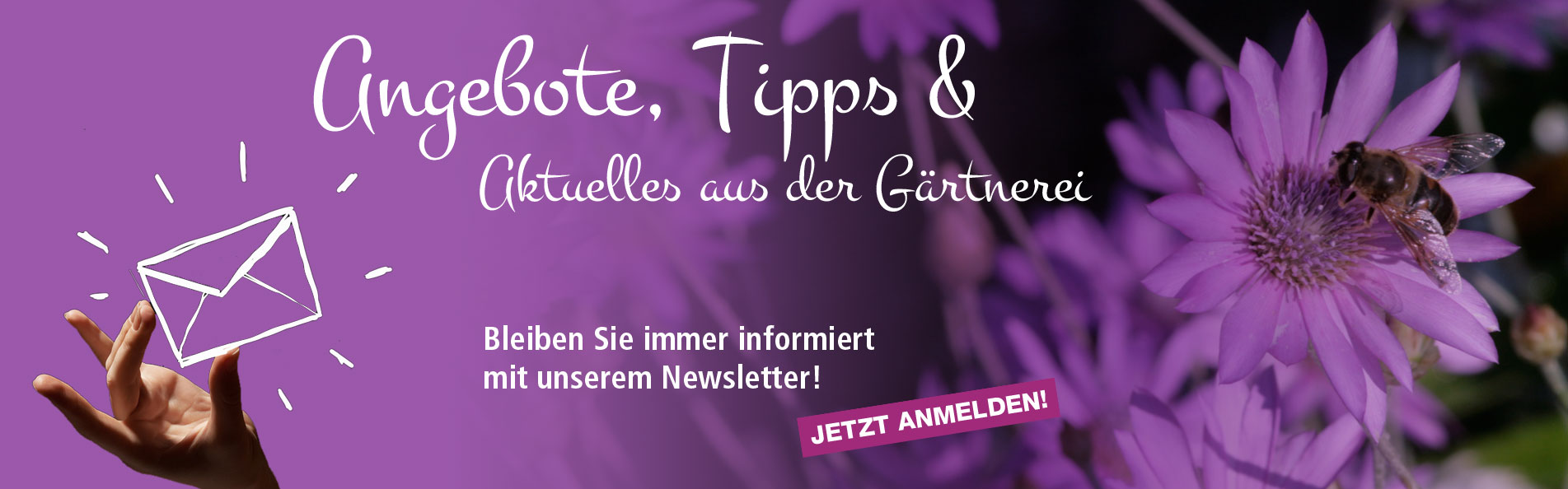 Slider_Newsletter_1
